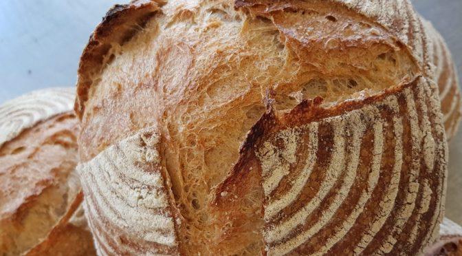 Cursus Introductie Boulangerie